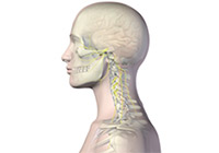 Head and Neck Cancer Treatment India