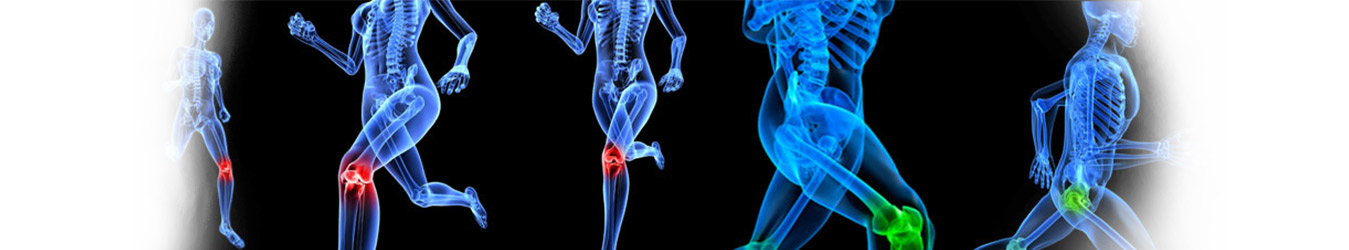 Best Joint Hip Knee Replacement Surgeon in India